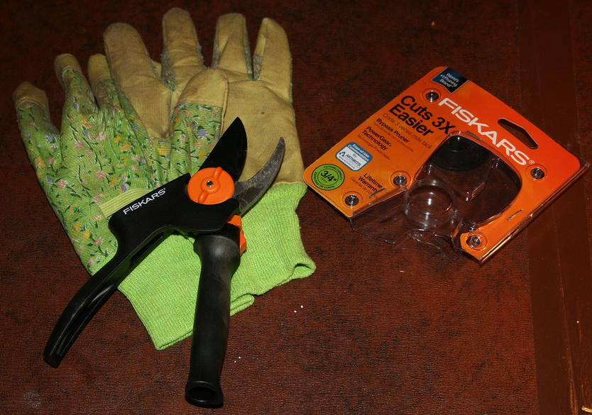 Gloves and new pruners
